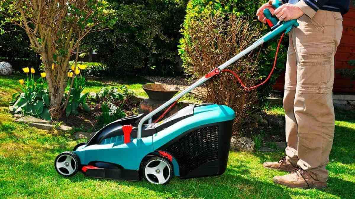 robot electrico rotak precio