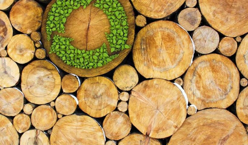 madera ecologica reciclable